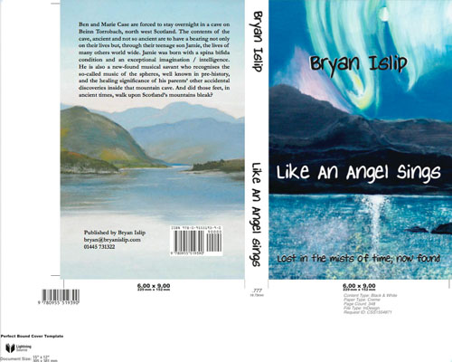 Book cover for Like an Angel Sings